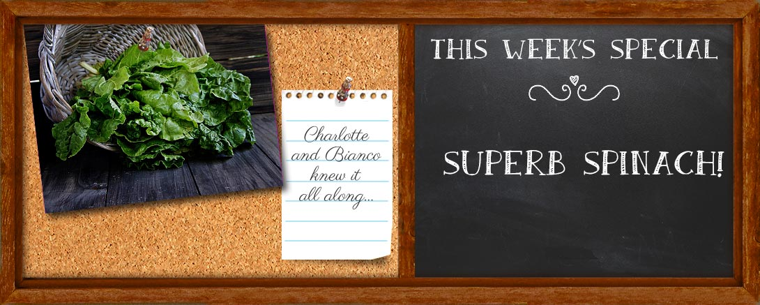 Superb-Spinach-Blackboard