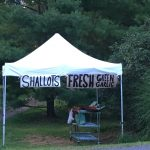 Garlic Roadside Farm Stand