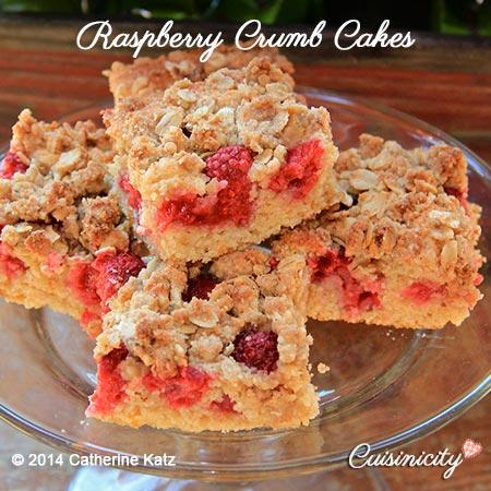Raspberry Crumb Cakes