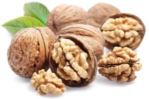 WALNUT_Small