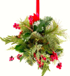 Mistletoe on white background