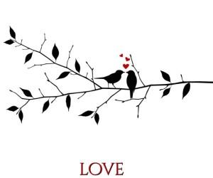 LOVEBIRDS FEATURE MEDIUM