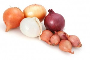 Onions ~ brown, white, spanish red, and french shallot. Isolated on white.