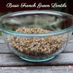 Basic French Green Lentils in a large see-through bowl on a grey picnic table outside